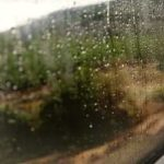 雨降りの日常|[おまけ]作品が一人歩きするほどのヒット作