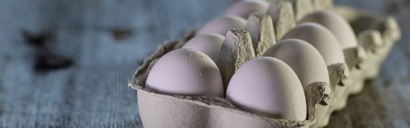 風呂小屋の最新情報|郵便局の3cm|卵屋さんの置き手紙|RYOBIが日立を超えるとき