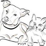 [10/24(午後)~30]住み込みで犬2頭と猫22匹のお世話をしてきた話|薪は財産