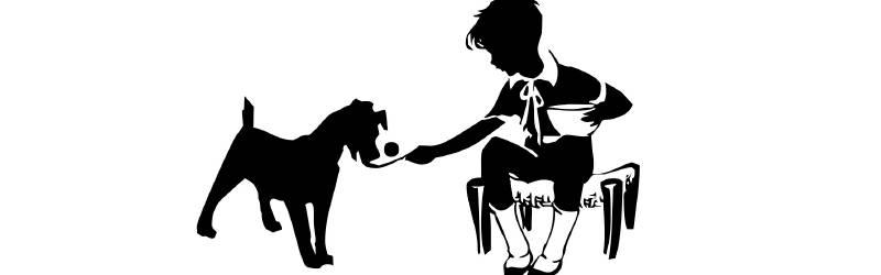 暖かい土地と寒い土地|犬と少年の友情に涙する