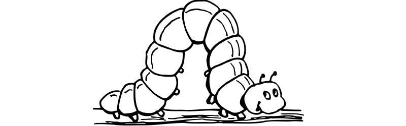 毛虫のコンプリート|古道具の清掃と修理とメンテナンス
